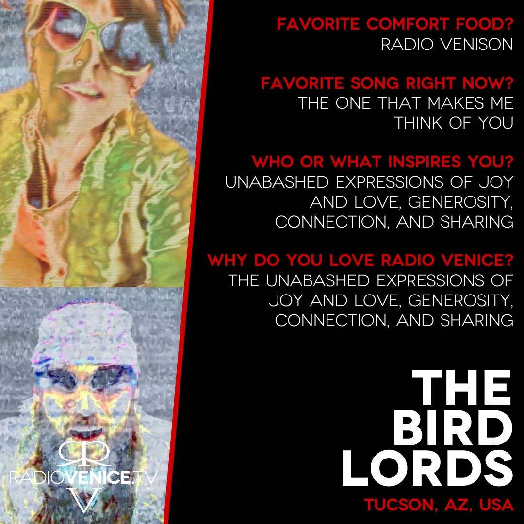 Q+A with The Bird Lords and Radio Venice